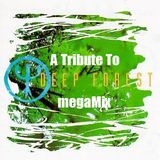 #56 A Tribute to Deep Forest megaMix