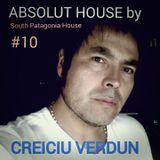 ABSOLUT HOUSE by CREICIU VERDUN # 10 South Patagonia House