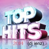 Top - Hits 2014 (dj ienz)