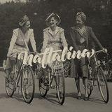 NAFTALINA - 293. emisija