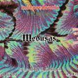 15 de Septiembre en Medusas
