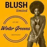 DJ Blush - Winter Grooves [Groovology Limited] (Live @ Rocket Studio Odessa)
