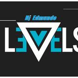Electro levels house