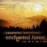 2017-07-03 -- Summer Intention 18 - Psytrance