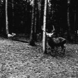 Alena Dorokhina - In The Highlands [dru 051]