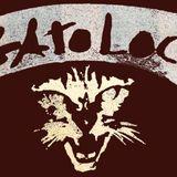 GatoLoco - Gato Shots #031