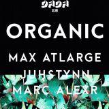 10/14 Organic party Promo Mix