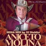 Aniceto Molina Mega Mix (2015)