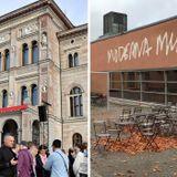 Konkurrensverket kan komma att granska museers vinavtal, Roger Wilson har sett filmen Widows och mus
