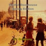Soulful Deephouse Spring Edition