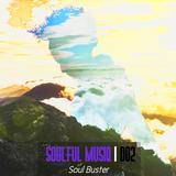 Soul Buster - Soulful Musiq / 002