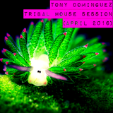 Tony Dominguez - Tribal House Session (April 2016)