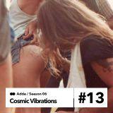 Cosmic Vibrations 6.13 paranoise radio 29.02.2016