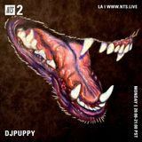 DJPUPPY - 9th October 2017