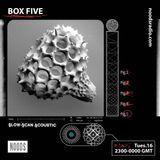 Box Five: 16th April '19