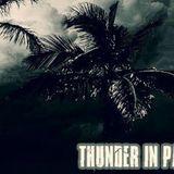 Zybrixx @ Thunder in Paradise Miami Club Stendal, 14.03.2015