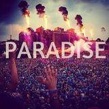 DJ Chelo- EDM Paradise Mix