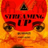 LIM ArtStyle pres. Hypnotic Melodies ▲ Streaming UP [ Warm Up ]