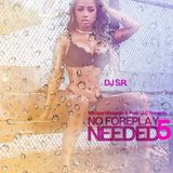 DJ S.R - No Foreplay Needed 5