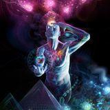 Bionic Psy Genetic 2013 Mix II