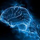 Brain by Djane JP