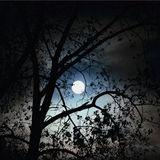 Es-Cee - Full Moon - 29/03/2014