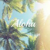 Ndn - Tropical Bliss (June promo mix)