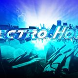 Platinum Electro House 5 (vocal)