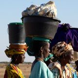 Voices from the Field - Senegal