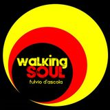 WALKING SOUL in studio Fulvio D'Ascola con Elena Introini nella rubrica Walking Books ,12/12/2917