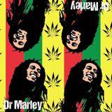 Professor can be a Reggae Rasta Dj also