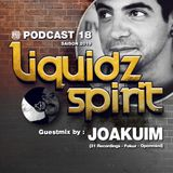 LIQUIDZ-SPIRIT Podcast #018 by JOAKUIM [31 Rec/Fokuz/Openmind]