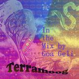 TERRAMOOG - OUT OF LAB  in the ( groovy ;) Mix