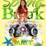 The Spring Break Party Rock Mix