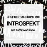 Confidential. Sound 001: Introspekt