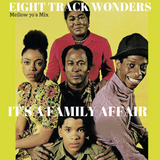 EIGHT TRACK WONDERS 13 - It's a  Family Affair