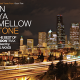 THE BEST OF IN YA MELLOW TONE mixed by DJ AKAGI (Release Candidate 2)
