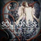 SOUNDNESS  ep 012 Guest mix by : J TRONIC