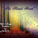""""" THE HUMID FOREST """" chill & lounge compilation"