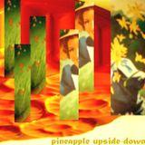 Pineapple Upside-Down Mix