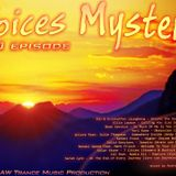 Andrew Wonderfull - Voices mystery 010 episode