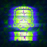 Tribal Pulse Podcast 004: Johnny Kaos