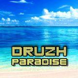 DRUZH - Paradise (2019)