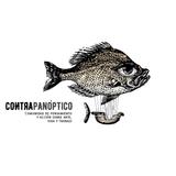 Contrapanóptico - Colectivos - 02-08-2017
