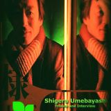 City Lights_Shigeru Umebayashi_A tribute and an Interview