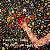Freedom Calling The Unknown 12 by iCazo