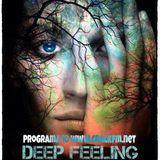 Deep Feeling by Fran-q Toro programa 10 CRACK FM