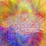 Chris Palmer Psyclical Psytech 010318