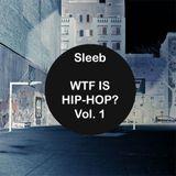 Sleeb - 'WTF Is Hip-Hop?' Vol. 1