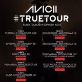 Avicii @ True Tour, Tele2 Arena Stockholm, Sweden 2014-02-28